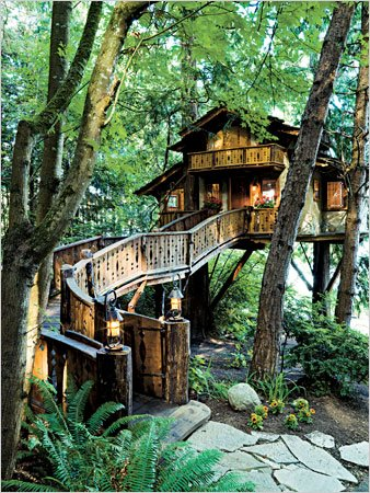 I dream of a tree house like this